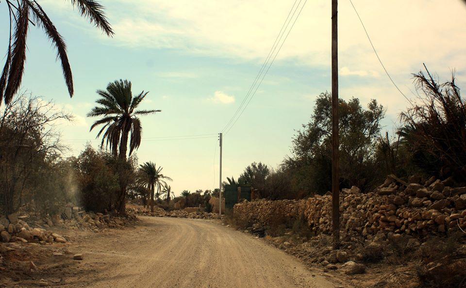 الطريق إلى الواحة التدمرية