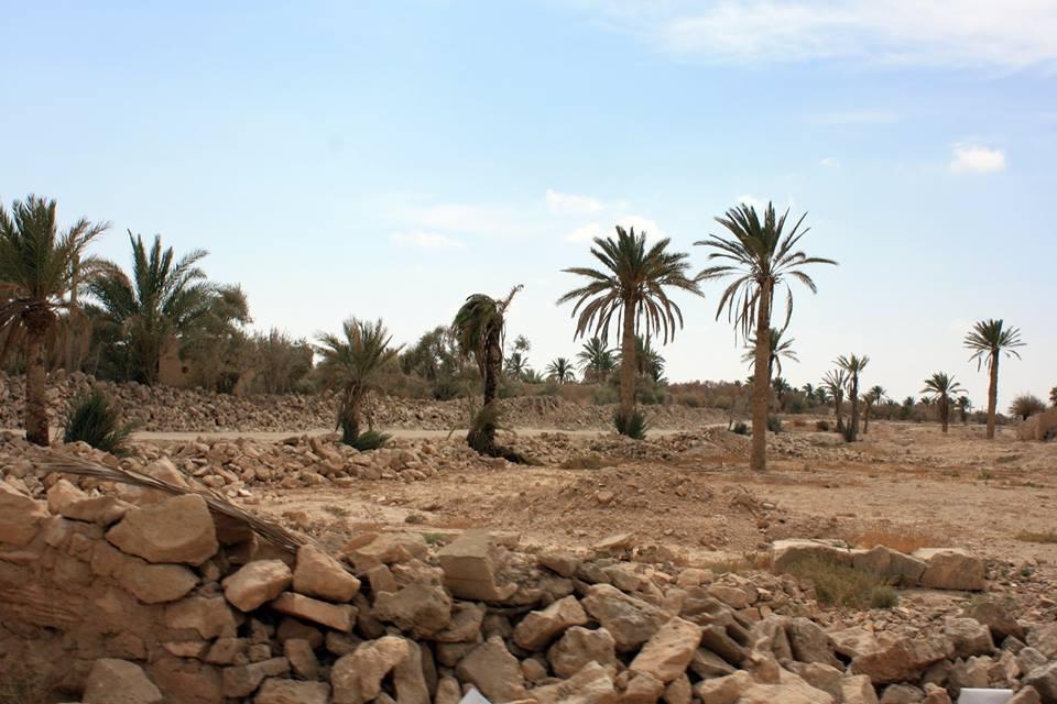 آثار الإهمال في الواحة التدمرية