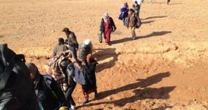 صراعات الحسكة تشرّد سكانها وتزيد من متطلباتهم الإغاثية – محمد محمود