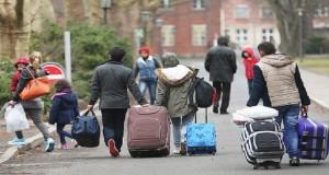 الهجرة هي الحل الوحيد.. فهل كانت الأفضل؟ – سلطانة محمد