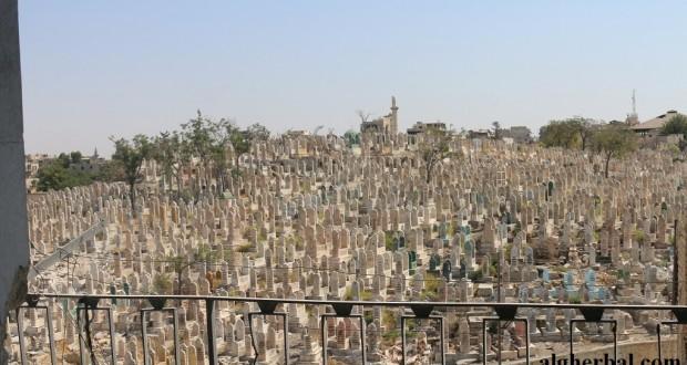 حلب تضيق بجثث موتاها – محمود عبد الرحمن