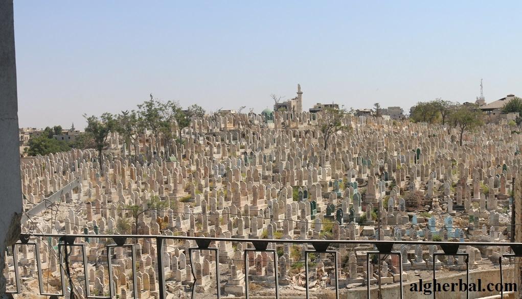 مقبرة ميسلون جبل العظام  (2)