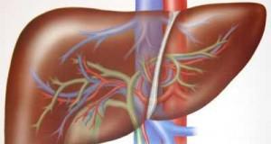 ما هو التهاب الكبد؟