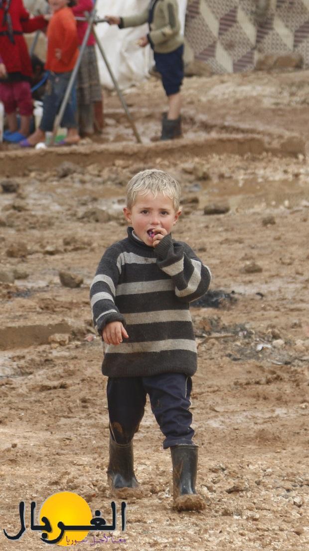 يعاني اللاجئون في مخيمات الداخل بالشتاء من ظروف كارثية نتيجة غياب الخدمات والمحروقات-مخيم باب السلامة- محمود عبد الرحمن