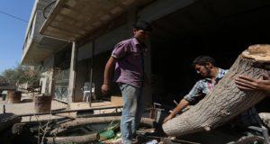 التحطيب الجائر يقضي على المساحات الخضراء في الشمال السوري – علاء الدين إسماعيل