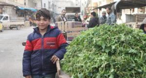مَن الذي سيعيد إعمار سوريا؟ كيف ومتى؟ ــأحمد عثمان